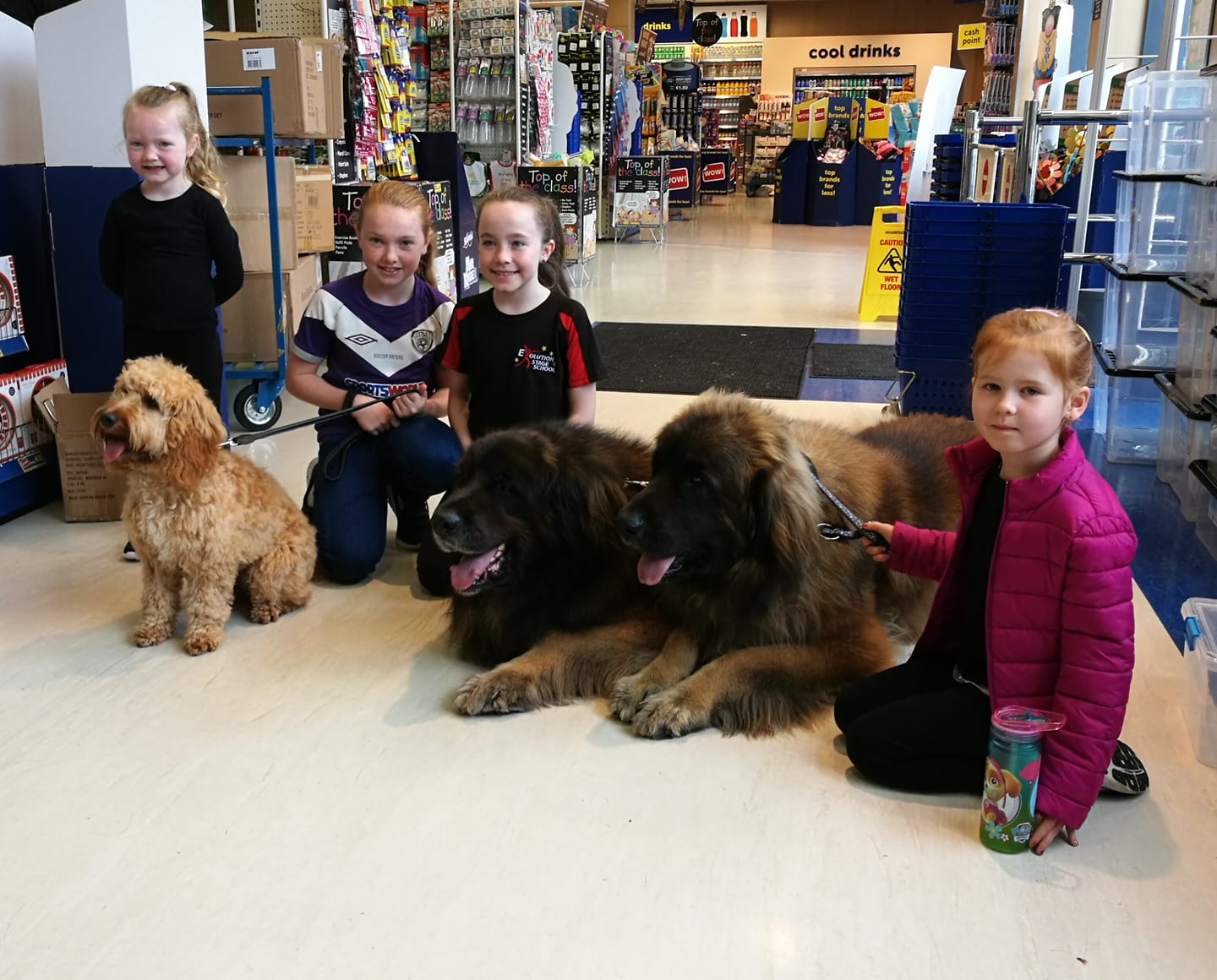 Tassu , Baloo and Daisy with kids at Euro Giant